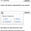 Search Combo Box: Displaying Popular Keywords