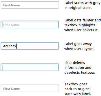 How to Put Labels Inside Textboxes Correctly